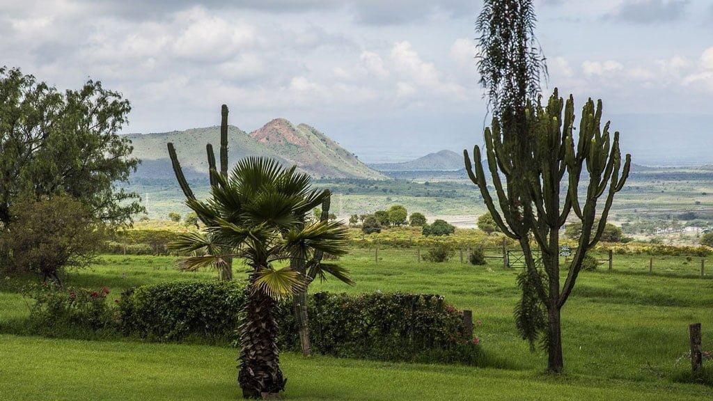 Lake Elmenteita - Kenya