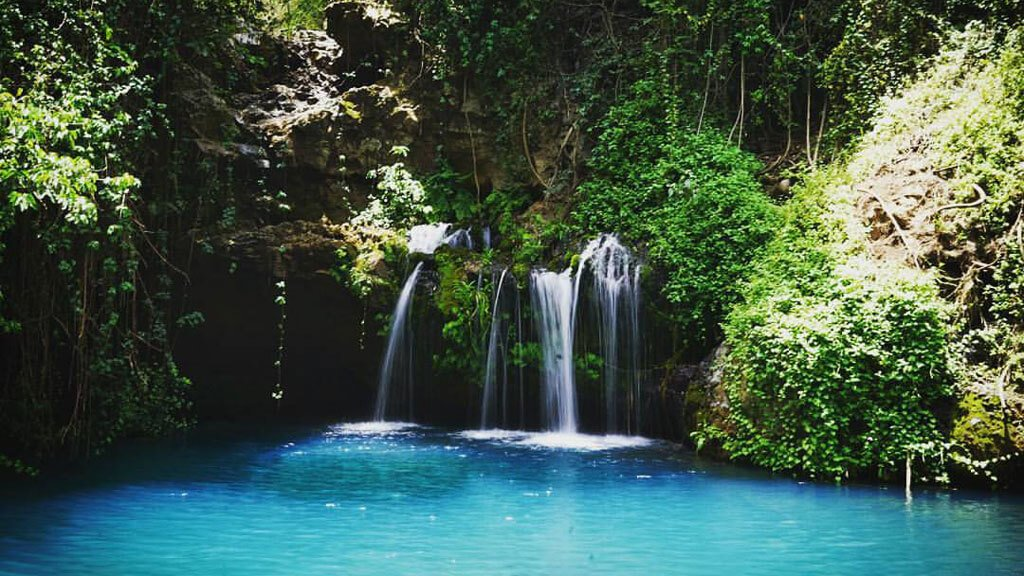 Ngare Ndare Forest Reserve - 10 Best Kept Secrets in Kenya