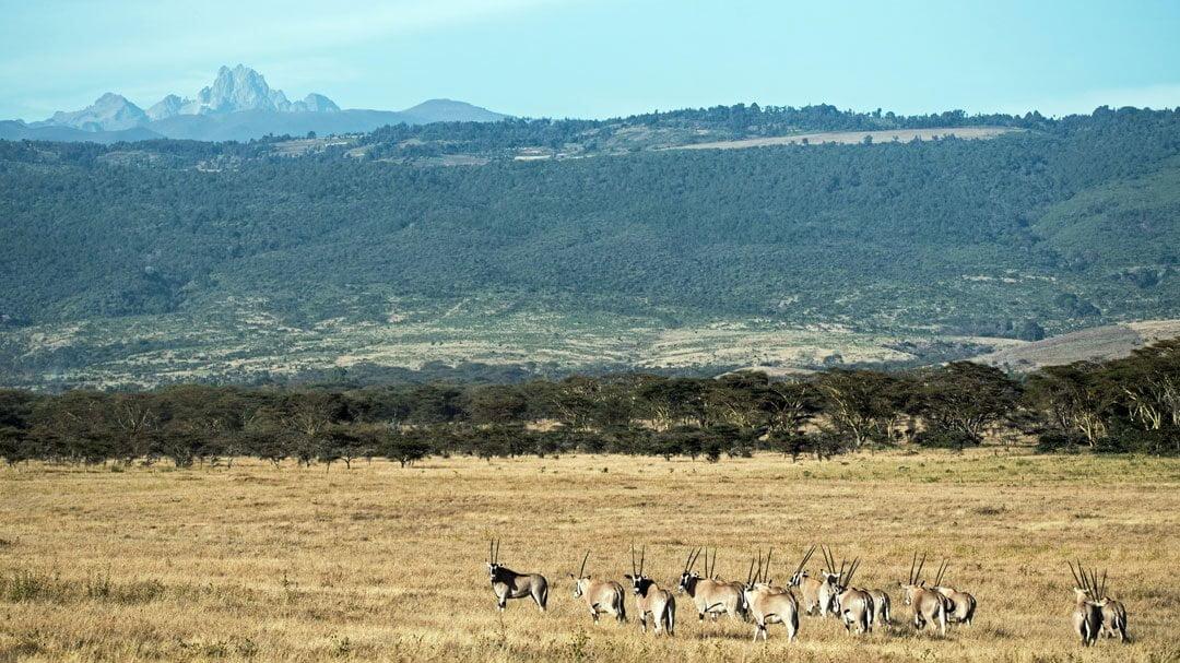 Close View of Mount Kenya - 10 Best Kept Secrets in Kenya